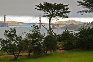 Northern,California,wedding,venues,San,Francisco,Marin,Sonoma